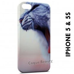 iPhone 5/5S Cute Little Cat